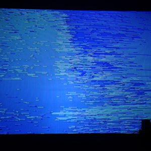 Botborg – Riga, Latvia – Spectropia Art+Communication Festival – 2008